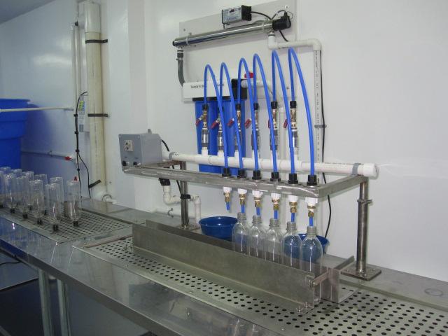 Easy Fill Manual Water Bottling Machine Wb Usa